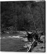 Long-pool-log-jam Canvas Print