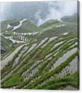 Longsheng Rice Terraces Canvas Print