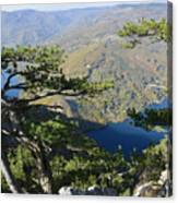 Look At The Pine Trees And The Lake Canvas Print