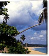 Los Tubos Beach Canvas Print
