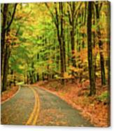 Lost In Pennsylvania - Paint Canvas Print