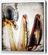 Mantis 11 Canvas Print