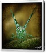 Mantis 5 Canvas Print
