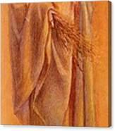 Melchoir Picture  Canvas Print