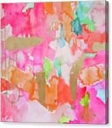Melon Mirage Canvas Print