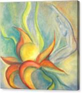 Menopause Canvas Print