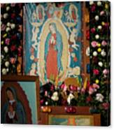 Mexico Our Lady Of Guadalupe Pilgrimage Canvas Print
