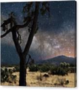 Milky Way 3 Canvas Print