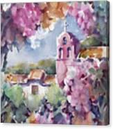 Mission Vineyard Canvas Print