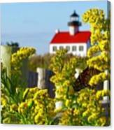 Monarch At East Point Light Canvas Print
