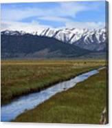Mono County Nevada Canvas Print