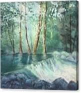 Mosquito Creek 2 Canvas Print