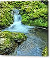 Mossy Moine Falls Canvas Print