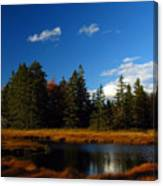 Mount Desert Island Canvas Print