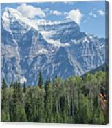 Mount Robson Canvas Print