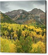 Mount Timpanogos Fall Colors Canvas Print