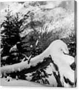 Mountain Snow 2 Canvas Print