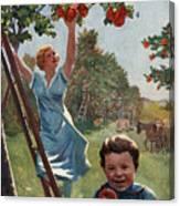 National Apple Week Canvas Print