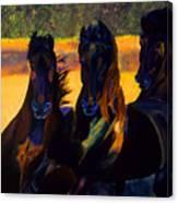 Neon Friesians Canvas Print