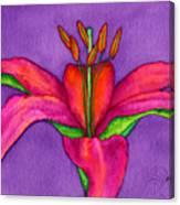 Neon Lily Canvas Print