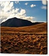 New Zealand Landscape Canvas Print