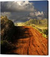 Noble Road Canvas Print
