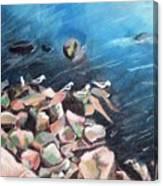 Nybirdsnfeb Canvas Print