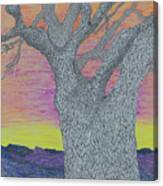 Oak Tree Canvas Print