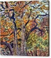 October Colors Canvas Print