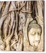 Old Bangkok Ruins Canvas Print