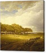 Old Orchard At Newport Canvas Print