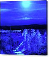 On A Cold Cold Night Canvas Print