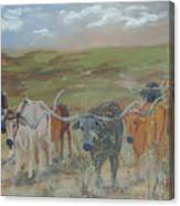 On The Chisholm Trail Canvas Print