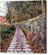 One To Follow Canvas Print