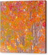 Orange And Red Autumn Canvas Print