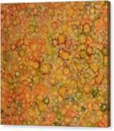 Orange Craze Canvas Print