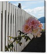 Orcas Island Rose Canvas Print