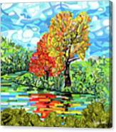 Reflection In The Wash  Canvas Print