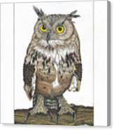 Owl In Pose Canvas Print