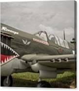 P - 40 Warhawk Canvas Print