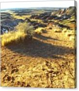 Painted Desert 2 Canvas Print