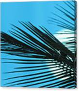 Palm Frond Silhouette Canvas Print