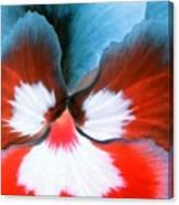 Pansy Power 86 Canvas Print