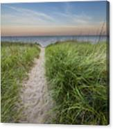 Path To Pierport Beach Canvas Print