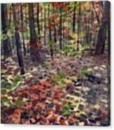 Path To Sope Creek Canvas Print