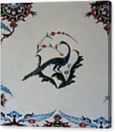Peackok Canvas Print