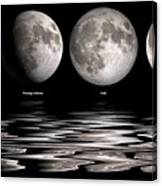 Phases Of The Moon Canvas Print