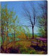 Picnic Table By The Lake Canvas Print