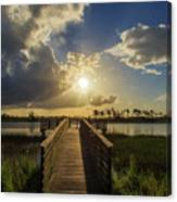 Pine Glades Sunset Canvas Print