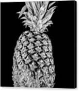 Pineapple Isolated On Black Canvas Print